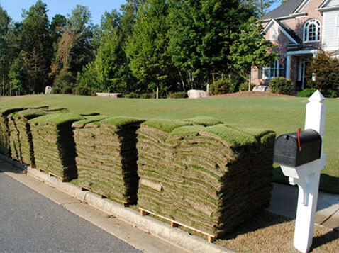Curbside Delivery Sod, New Orleans