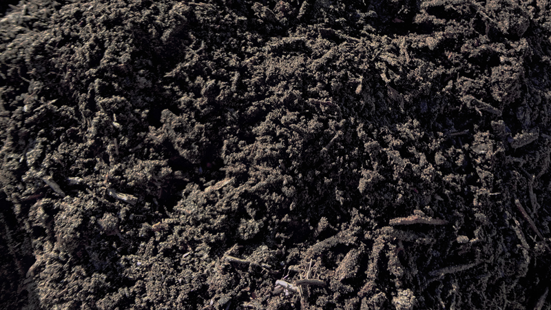 Delta sod jefferson la soils for Backyard soil